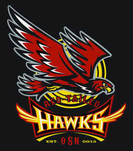 RedTailedHawks